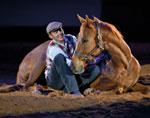 e-liberty-horsemanship
