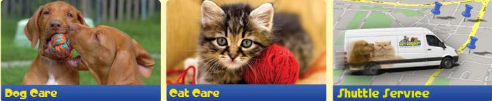 Dog Care Cat Care Shuttle Service